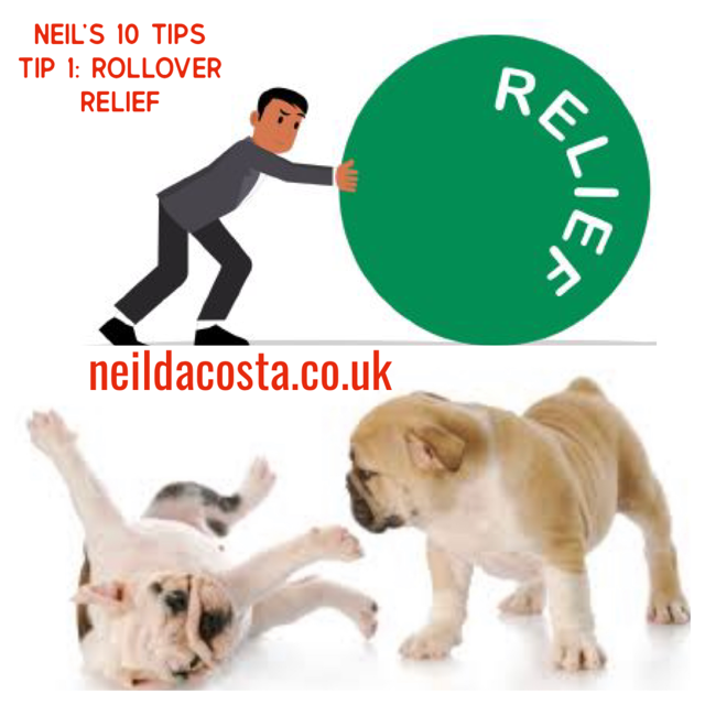 Neil's 10 Tips Tip 1:Rollover Relief